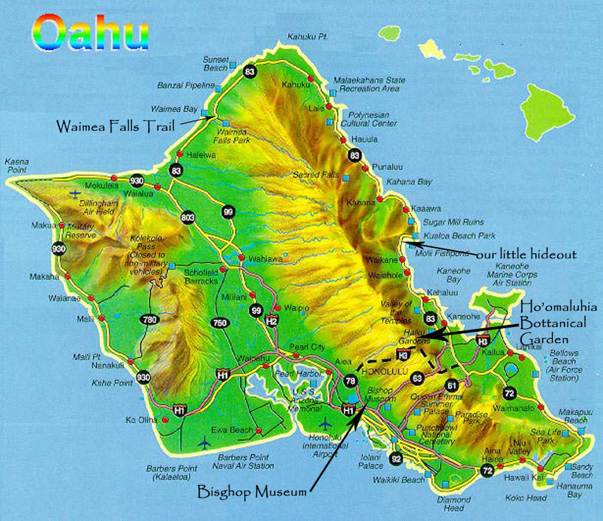 Image result for oahu from above