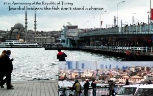 Istanbul fishing-10-29