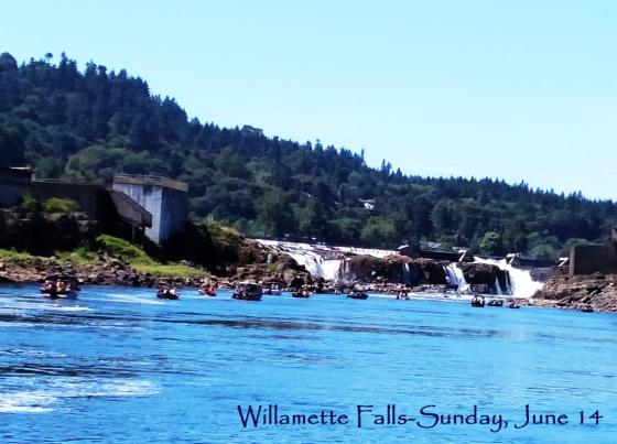Willamette Falls-06014015