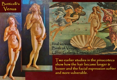 torino-botticelli-venere-3