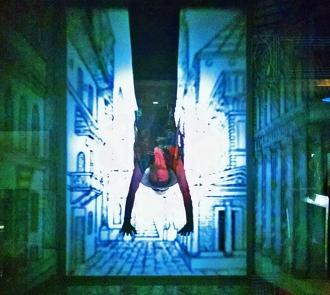torino-diana-in-camera-obscura