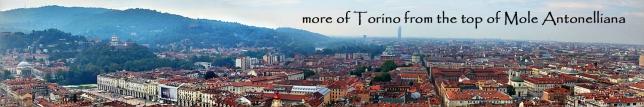 torino-panorama-1